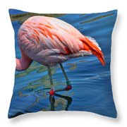 Palm Springs Flamingo Throw Pillow