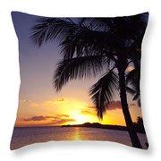 Palm Sunset Throw Pillow