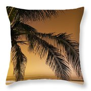 Palm Tree And Sunset In Mexico Throw Pillow by Darren Greenwood