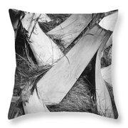 Palm Tree Macro Throw Pillow by Adam Romanowicz