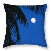 Palm Tree Silhouetted Against The Sky Throw Pillow
