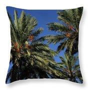 Palms 9838b Throw Pillow