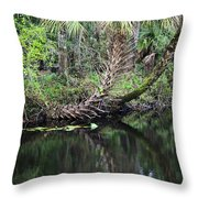 Palms On The River Throw Pillow