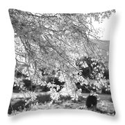 Palo Verde Blossoms Throw Pillow