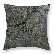 Palo Verde In The Rain Throw Pillow