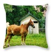Palomino In Pasture Throw Pillow