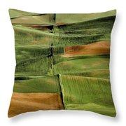 Palouse Fields, Whitman County Throw Pillow
