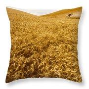 Palouse Wheat Throw Pillow