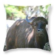 Pam The Bull Throw Pillow