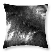Pampas Dew Throw Pillow