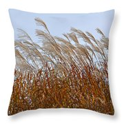 Pampas Grass In The Wind 1 Throw Pillow