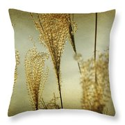 Pampas Grass Panoramic Throw Pillow