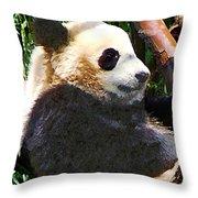 Panda In Tree Throw Pillow