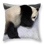Panda Paws Throw Pillow
