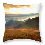 Panoramic Image Of Late Afternoon Throw Pillow