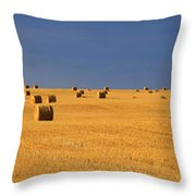 Panoramic Of A Straw Field, Near Val Throw Pillow
