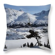 Panoramic Of An Unnamed Mountain Taken Throw Pillow