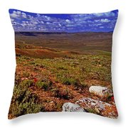Panoramic View Of Fossil Butte Nm Valley Throw Pillow