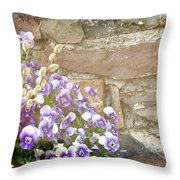 Pansies And Pussywillows Throw Pillow