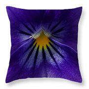 Pansy Abstract Throw Pillow