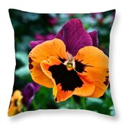 Pansy Power Throw Pillow