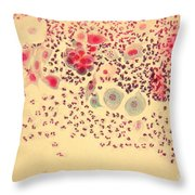 Pap Smear Throw Pillow by AFIP / Science Source