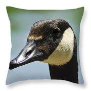 Papa Goose Eye Throw Pillow
