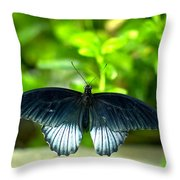 Papilio Lowii II Throw Pillow