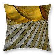 Parachute Shade Throw Pillow