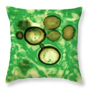 Paracoccidioides Brasiliensis Throw Pillow