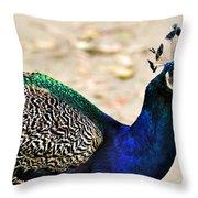 Parading Peacock Throw Pillow
