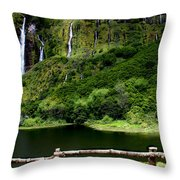 Paradise II Throw Pillow