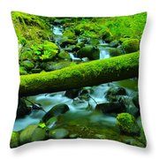 Paradise Of Mossy Logs And Slow Water   Throw Pillow