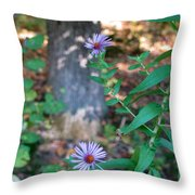 Paradise Springs Flowers 1 Throw Pillow