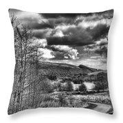 Parc Cwm Darran Mono Throw Pillow