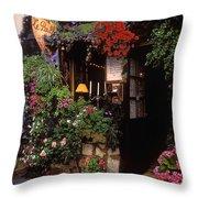 Paris Wine Store Throw Pillow
