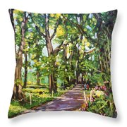 Park Hotel Avenue County Cavan Throw Pillow