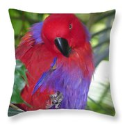 Parrot Attitude Throw Pillow