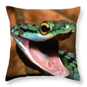 Parrot Snake Leptophis Ahaetulla Throw Pillow