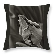 Parrot Tulip In Black And White Throw Pillow