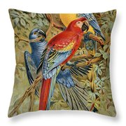 Parrots: Macaws, 19th Cent Throw Pillow
