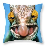 Parsons Chameleon Calumma Parsonii Throw Pillow