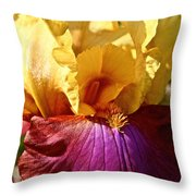 Party Colors Throw Pillow