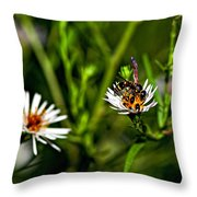 Party Flower 2 Throw Pillow