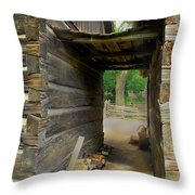 Passage To Another Time Throw Pillow