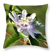 Passion Flower - May Pop Bloom Throw Pillow