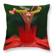Passion Flower Crown Throw Pillow
