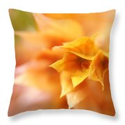 Passion For Flowers. Orange Delight Throw Pillow