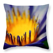 Passion Is Energy Throw Pillow