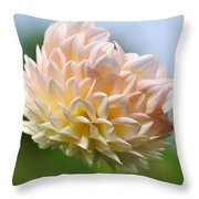 Pastel Dahlia Throw Pillow